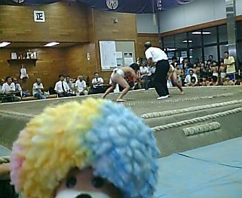 大相撲、市川場所だゾ