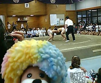 恐岩親方のお相撲ダイジェストだ